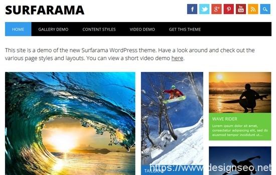 20 款WordPress Themes 7