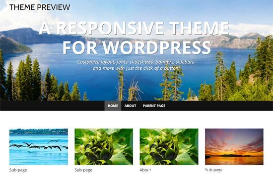 100款免费WordPress主题 21