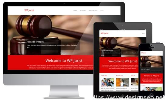 100款免费WordPress主题 22