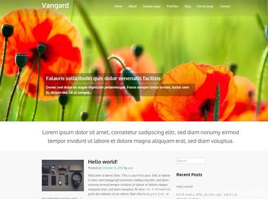 100款免费WordPress主题 27