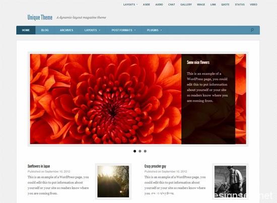 100款免费WordPress主题 59