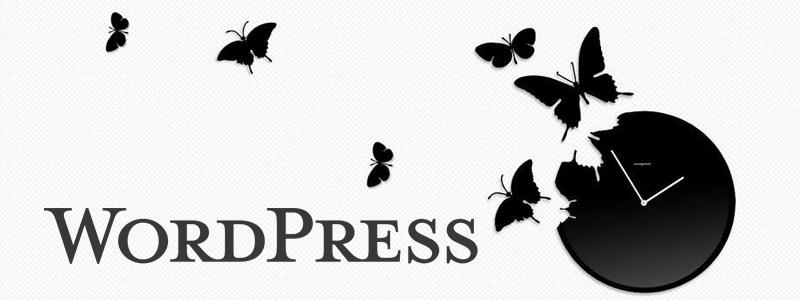 WordPress前台显示登录用户的注册时间 1